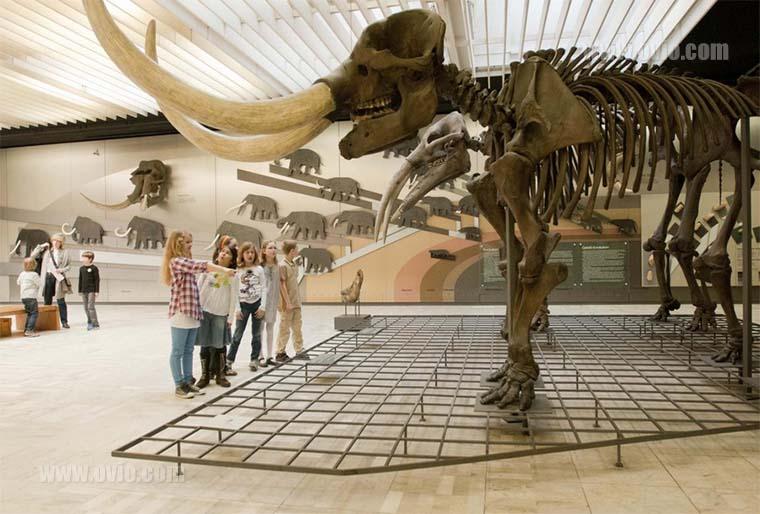 سنسور دما و رطوبت در موزه ها و عتیقه فروشی ها