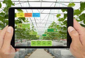 گلخانه هوشمند چیست؟