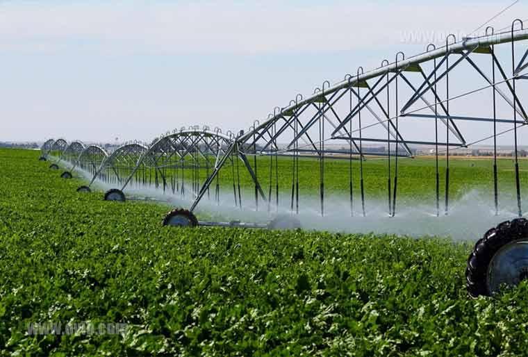 اپلیکیشن های کشاورزی هوشمند
