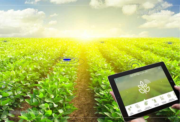 کشاورزی هوشمند
