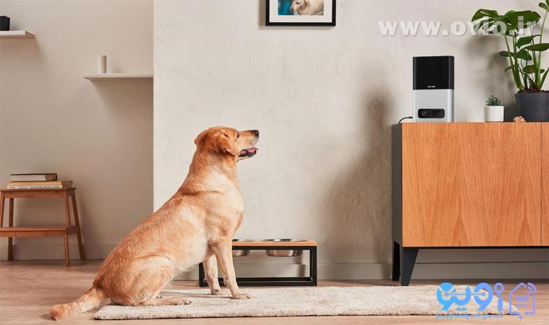خانه هوشمند برای حیوانات خانگی