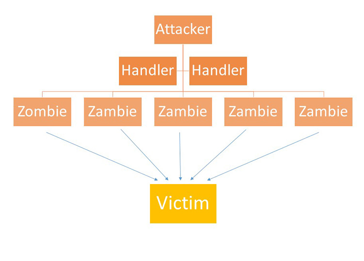 نحوه حمله botnet